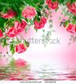 stock-photo-bouquet-of-delicate-roses-floral-background-162188126