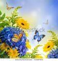 stock-photo-bouquet-from-blue-hydrangeas-and-butterfly-a-flower-background-143297653