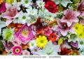 stock-photo-many-colorful-flower-wall-background-411406954