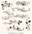 stock-vector-set-of-calligraphic-floral-elements-vector-decorative-twigs-and-flowers-ornamental-bran