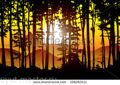 stock-vector-vector-forest-landscape-at-sunrise-108263111
